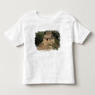 Mexico, Chiapas province,  Palenque, Temple of Tee Shirt
