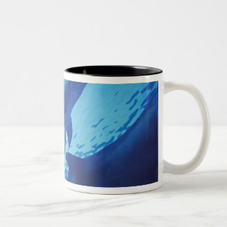Mexico, Cozumel. Bottlenosed Dolphin, Tursiops Coffee Mugs