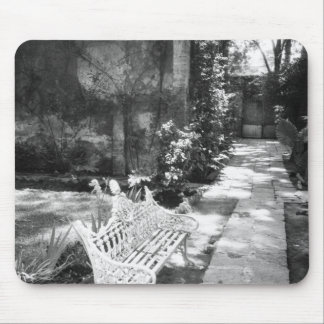 MEXICO, D.F., Mexico City, COYOACAN: Bench at Mouse Pad
