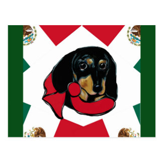 MEXICO DOXIE POSTCARD