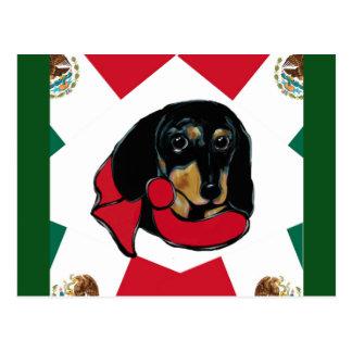 MEXICO DOXIE POSTCARD