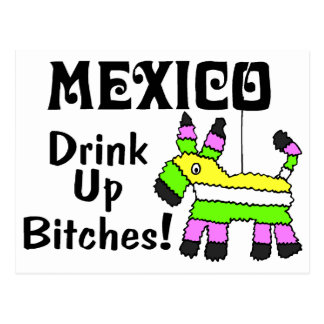 Mexico Drink Up Bitches Pinata Postcard