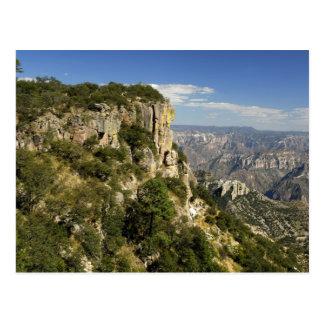 México, estado de la chihuahua, barranco de cobre. postal