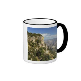 México, estado de la chihuahua, barranco de cobre. taza de café