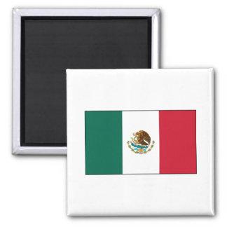 Mexico FLAG International Fridge Magnet