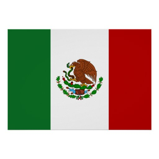 Mexico Flag Print