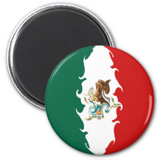 Mexico Gnarly Flag Refrigerator Magnets