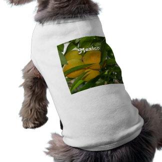 Mexico Grapefruit Dog T Shirt