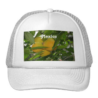 Mexico Grapefruit Trucker Hats