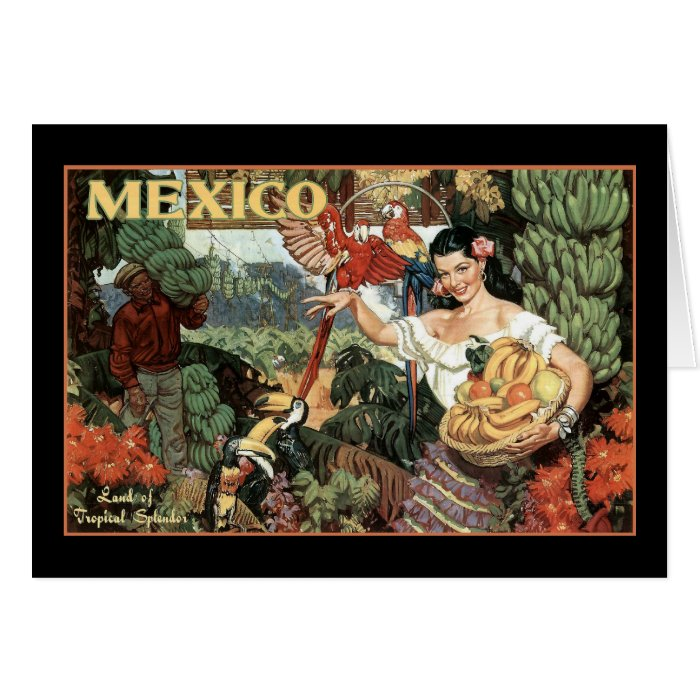 mexico land of tropical splendour card