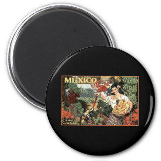 mexico land of tropical splendour 2 inch round magnet