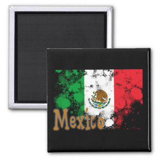 Mexico Fridge Magnet