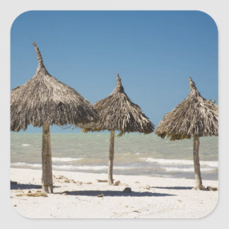 México península del Yucatán Progreso Paja Calcomanías Cuadradass Personalizadas