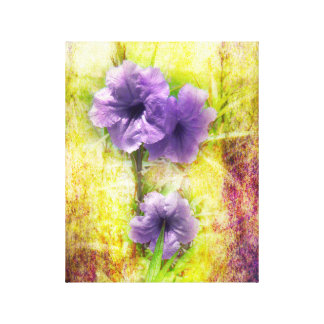 Mexico Petunia on Canvas Gallery Wrapped Canvas