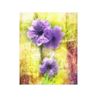Mexico Petunia on Canvas