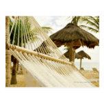 México, Playa del Carmen, hamaca en la playa Postal
