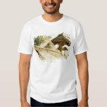 Mexico, Playa Del Carmen, hammock on beach Tee Shirts