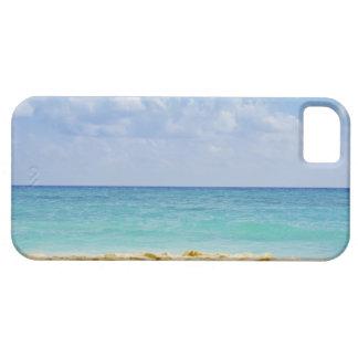 Mexico, Playa Del Carmen, seascape 4 iPhone 5 Cover