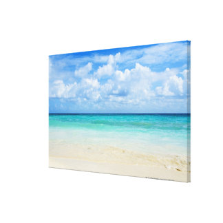 Mexico, Playa Del Carmen, tropical beach Canvas Print