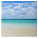 Mexico, Playa Del Carmen, tropical beach Large Square Tile