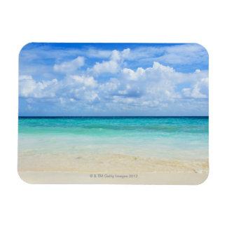 Mexico, Playa Del Carmen, tropical beach Magnet