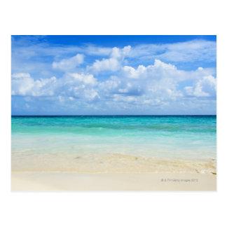 Mexico, Playa Del Carmen, tropical beach Postcard