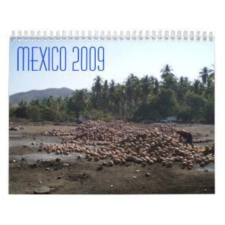 México por 12 meses calendarios