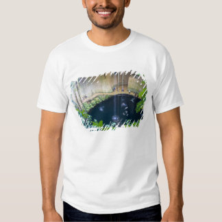 Mexico, Quintana Roo, near Chichen Itza, T-shirt