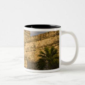 México, Quintana Roo, península del Yucatán, Taza De Dos Tonos