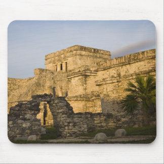 Mexico, Quintana Roo, Yucatan Peninsula, Mouse Pad
