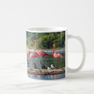 Mexico Rio Lagartos Coffee Mug