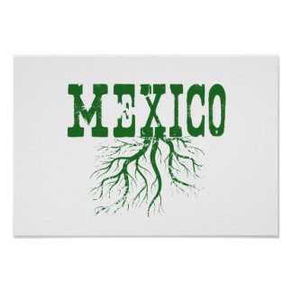 Mexico Roots Poster