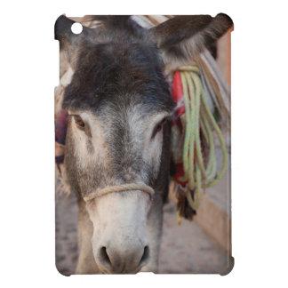 Mexico, San Miguel De Allende 2 iPad Mini Covers
