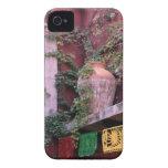 Mexico, San Miguel de Allende, Ivy, clay pot, iPhone 4 Case-Mate Case
