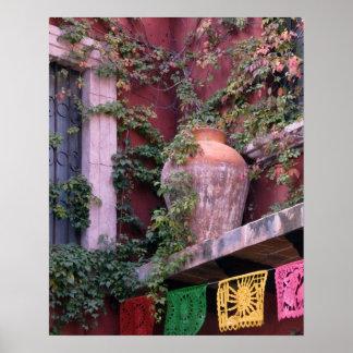 Mexico, San Miguel de Allende, Ivy, clay pot, Poster