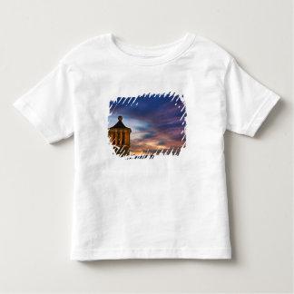 Mexico, San Miguel de Allende. Sunset over Toddler T-shirt