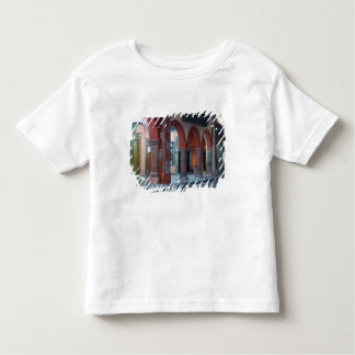 Mexico, San Miguel de Allende, The Jardin, Toddler T-shirt