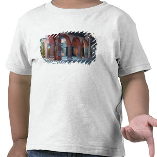 Mexico, San Miguel de Allende, The Jardin, Shirts