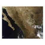 México septentrional cojinete