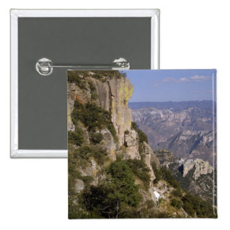 Mexico, State of Chihuahua, Copper Canyon. THIS 2 Button