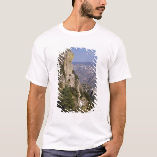 Mexico, State of Chihuahua, Copper Canyon. THIS 2 T-Shirt