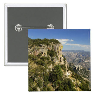 Mexico, State of Chihuahua, Copper Canyon. THIS Button