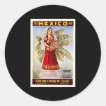 Mexico Tehuantepec Classic Round Sticker