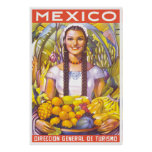 Mexico Travel Poster 2