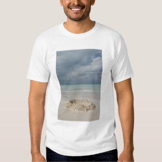 Mexico, Yucatan, Isla Mujeres Island of Shirt