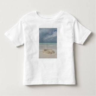 Mexico, Yucatan, Isla Mujeres Island of Toddler T-shirt