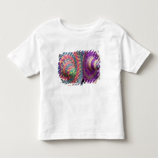Mexico, Yucatan, Merida, traditional woven Toddler T-shirt