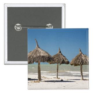 Mexico, Yucatan Peninsula, Progreso. Thatch 2 Inch Square Button