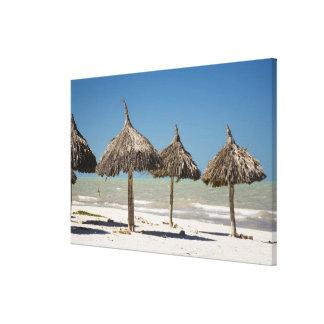 Mexico, Yucatan Peninsula, Progreso. Thatch Canvas Print