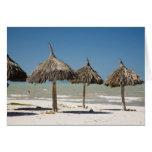 Mexico, Yucatan Peninsula, Progreso. Thatch Cards